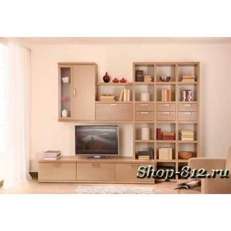 Корпусная мебель для гостиной CAT6 (Катрин)