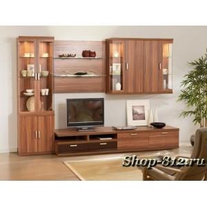Корпусная мебель для гостиной CAT10 (Катрин)