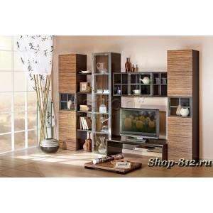 Корпусная мебель для гостиной CAT3 (Ассоль)