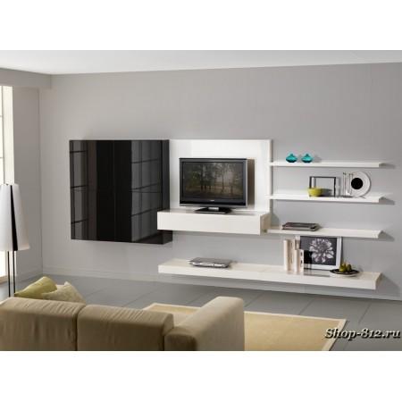 Корпусная мебель для гостиной CAT03 (Натали)