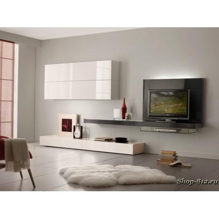 Корпусная мебель для гостиной CAT01 (Натали)