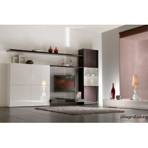 Корпусная мебель для гостиной CAT09 (Натали)