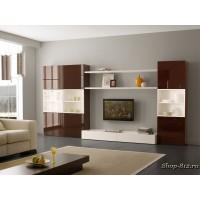 Корпусная мебель для гостиной CAT12 (Натали)