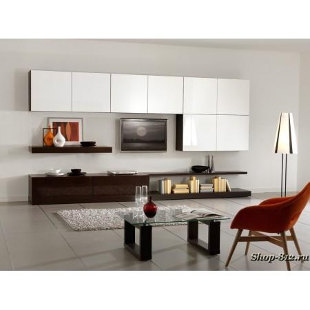 Корпусная мебель для гостиной CAT08 (Натали)